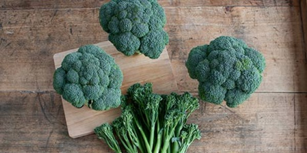 Good.for.you.broccoli.600.jpg