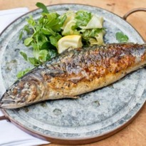 Angela Hartnett's chargrilled mackerel with pickled cucumber recipe