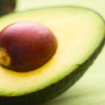 avocado-med.jpg