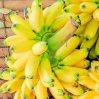 banana-med.jpg