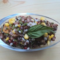 Recipe of Barley and Red Rice Salad