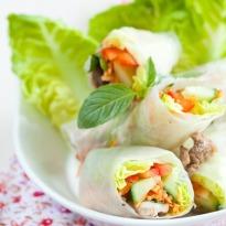 Vietnamese Cold Spring Rolls