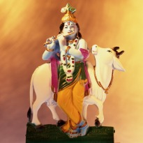 Sing. Dance. Celebrate: Janmashtami is Here!