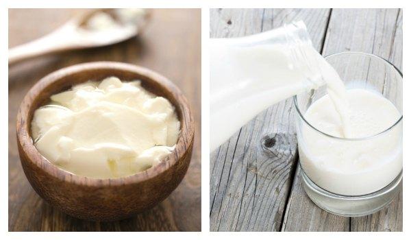 milk-yogurt_600.jpg