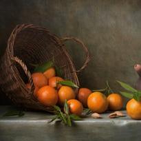 oranges-med.jpg