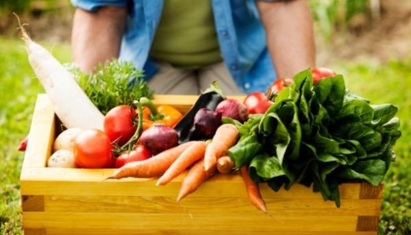 organic-food_600.jpg