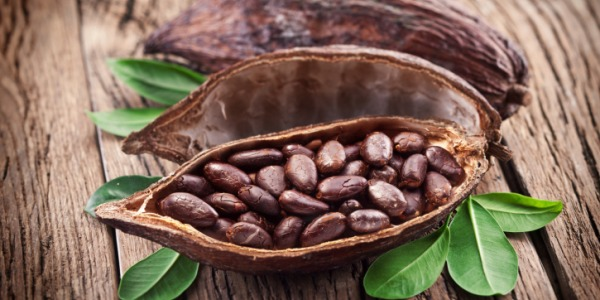 raw-cocoa_article.jpg