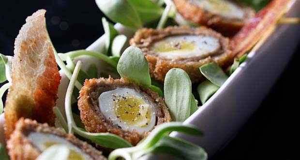 Quail Scotch Eggs with Micro Green Salad