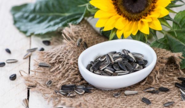 sunflower-seed-600.jpg