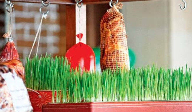wheatgrass_article.jpg