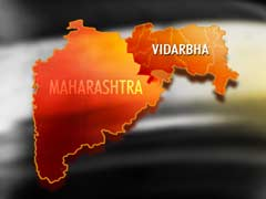 Fulfill Vidarbha Statehood Demand Before Maharashtra Polls, Says Congress Leader
