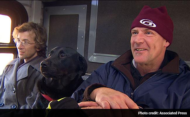 dog-riding-bus-2-650x400_big_story.jpg