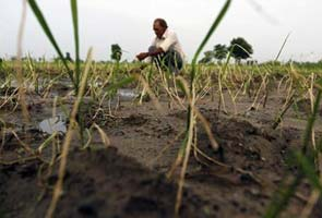 Good news for Tamil Nadu farmers: Karnataka releases water into Cauvery