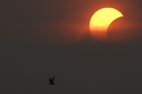 Indians Likely to Witness 2 Celestial Events in 2015