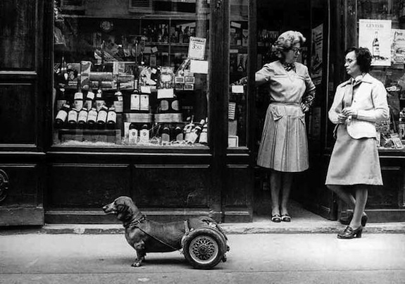 Αποτέλεσμα εικόνας για Robert Doisneau
