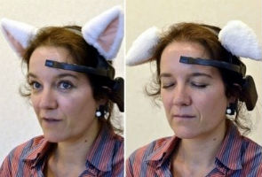 Japan's next gizmo: brainwave-controlled cat ears