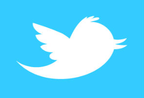 Indian government sent 'less than 10' user information requests to Twitter this year