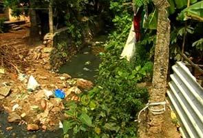 kerala-dengue-mosquitoes-295.jpg
