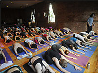 Yoganewmidpic1.jpg